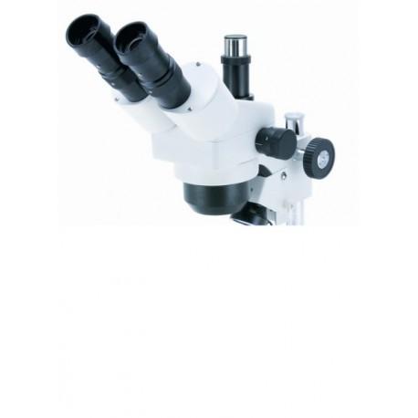 Cabezal Trinocular zoom, con Oculares