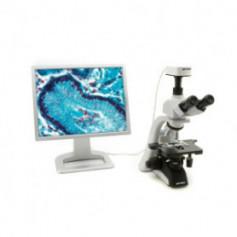 Microscopio trinocular Invertido Metalografico