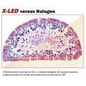 Microscopio biológico XLED