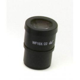 SEWH10 Ocular micrométrico WF10x/22mm