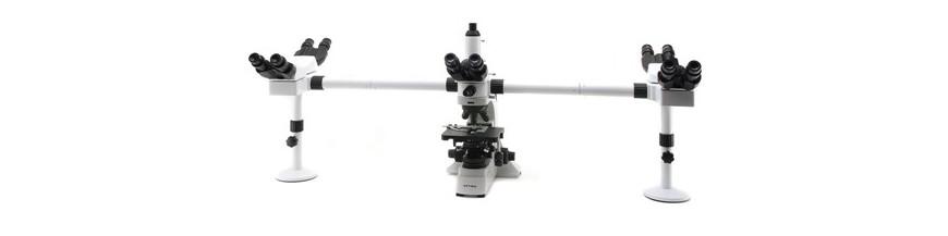 Microscopio Multiple