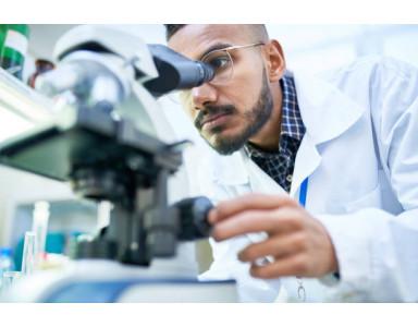 Análisis de la calidad del agua mediante el microscopio